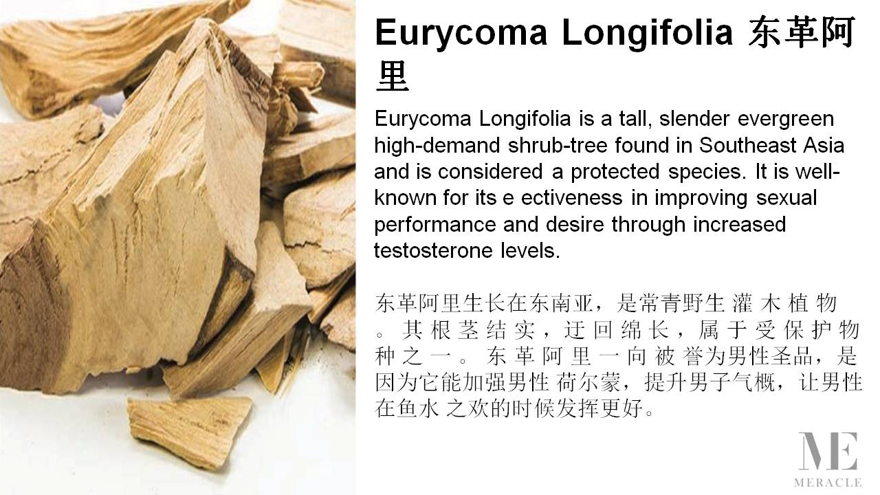 Memen Stamina Drink Eurycoma Longifolia